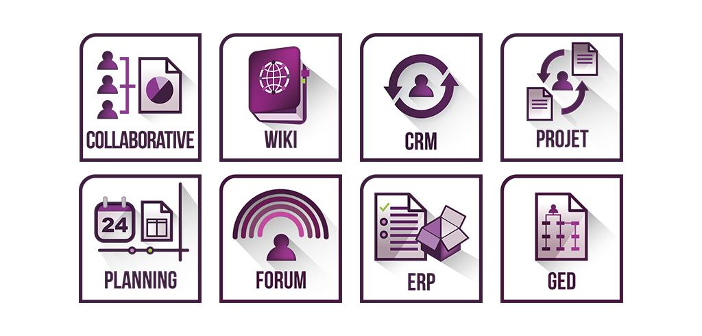 portfolio-lxn-icone-software